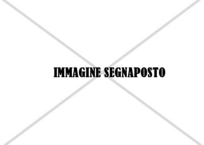 Immagine-Segnaposto